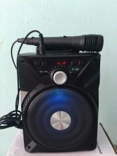 Loa Bluetooth hát karaoke P88
