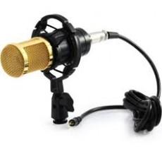 Mic Livestream BM800