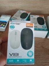 Mouse không dây Forter V181